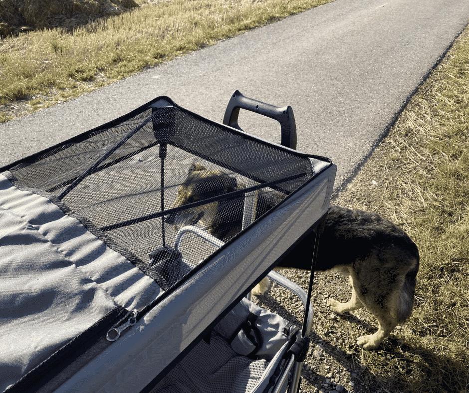 Dach vom Hunde Bollerwagen