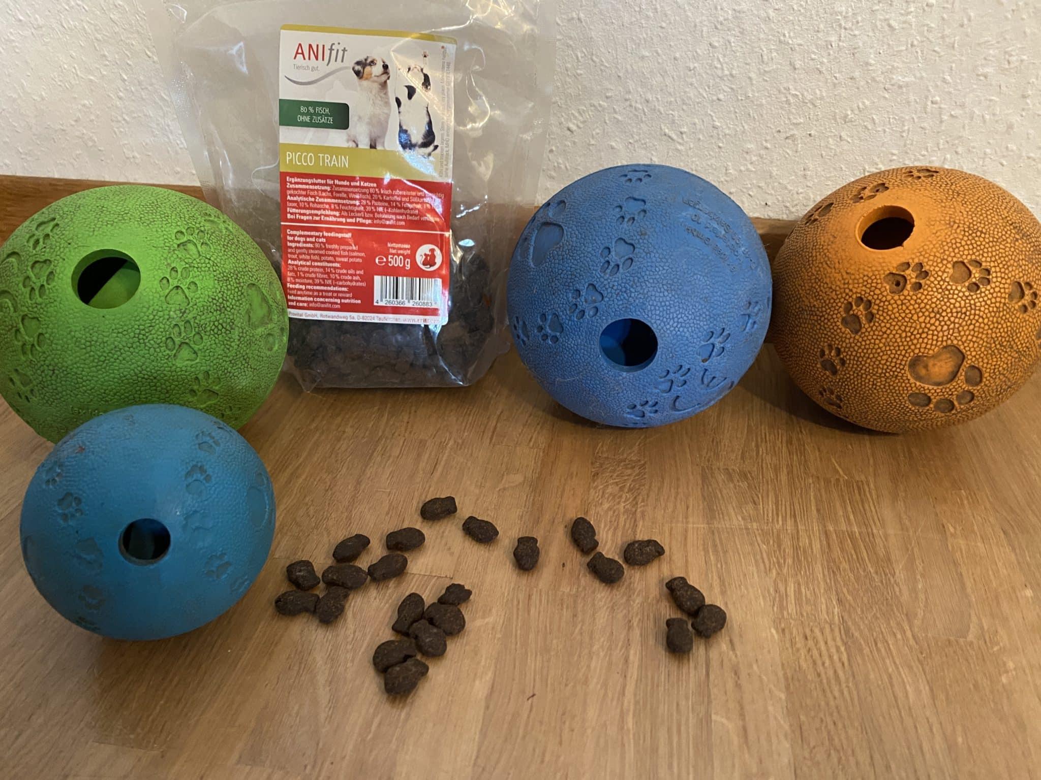Intelligenz Spiele für Hunde Ball und Snacks